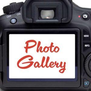 Photo Gallery Dutchess Fair